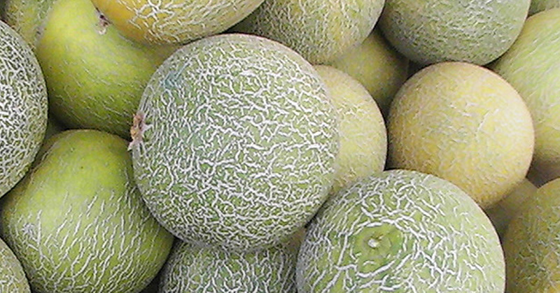 Cook Naked: How to Dice A Melon